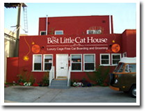 The best little cat house luxury cage free cat only for Cat hotels los angeles